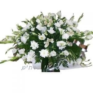 פלאי פרחים
